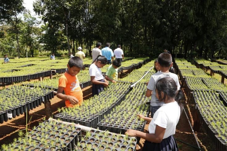 miambiente consejo 2016 (29)
