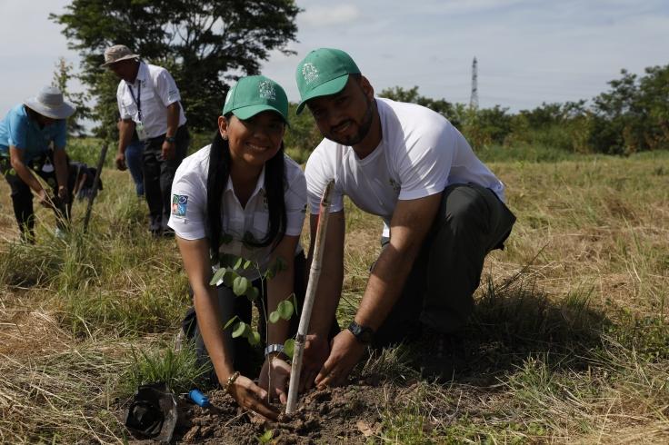miambiente reforestacion en udelas penonome (117)